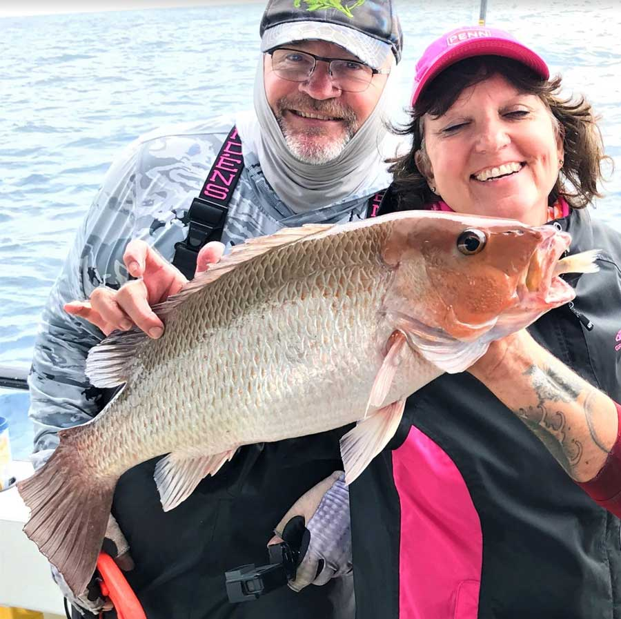 mangrove snapper tampa offshore fishing