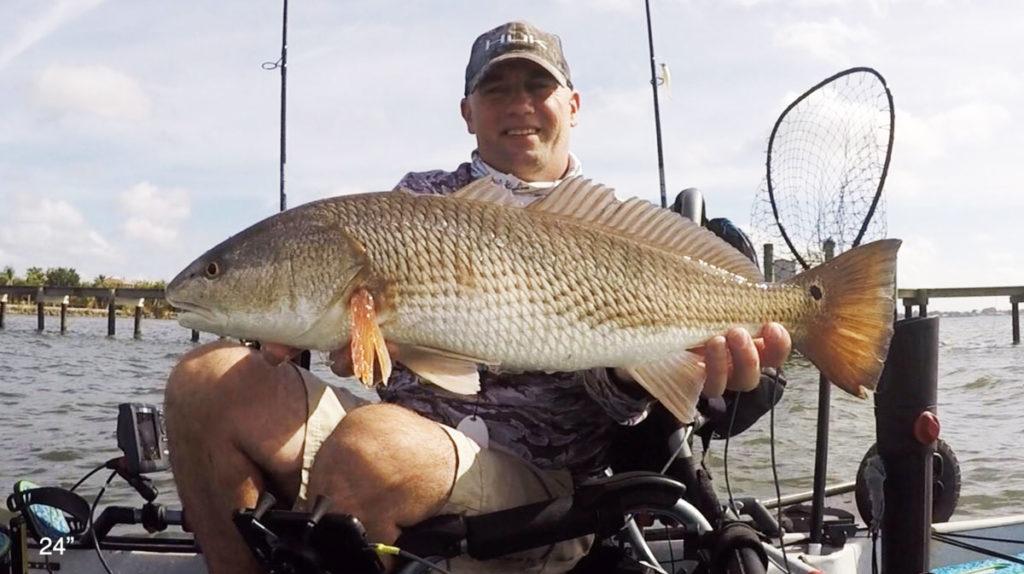 tampa redfish